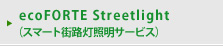 ecoFORTE Streetlight(スマート街路灯照明サービス)