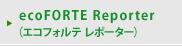 ecoFORTE Reporter